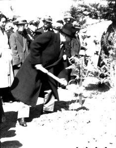 014 民國二十六年三月十二日滬舉行植樹節,俞鴻鈞〈第二排左二〉、吳鐵城〈第二排中著長大衣者〉